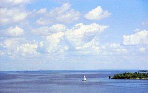 На исследование воды в Кременчугском водохранилище и Днепре экологи просят 100 тысяч гривен