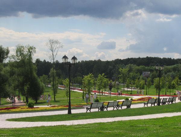 фотографии в парке: