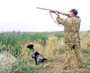 За нарушение сроков перерегистрации охотничьего огнестрельного оружия и спецсредств предусмотрена юридическая ответственность