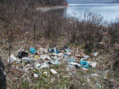 Кременчугская рекламная сеть  Ответственность за чистоту в городе должен осознать каждый кременчужанин