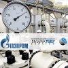 Янукович исключил слияние Нефтегаза с Газпромом