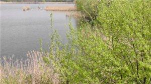 В Кременчуге местные рыбаки нашли труп 37-летнего мужчины