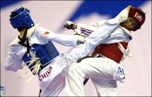 Городской совет поддержал развитие Taekwondo WTF в Кременчуге