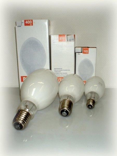 В Кременчуге сдать лампы с ртутью можно в «КАТП 1628»