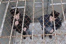Украинским заключенным будут давать двухнедельные «отпуска»