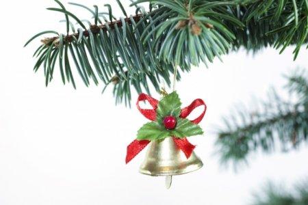 В Кременчуге ожидают Новый год без снега