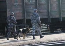 """В Кременчуге поймали """"железнодорожных"""" преступников"""