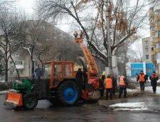 КП «Благоустройство Кременчуга» проводит плановую обрезку деревьев