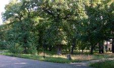 В Кременчуге восстановят Городской сад
