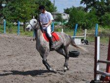 В конной школе «Фаворит» состоялся Кубок Надежды, посвященный Надежде Колесник