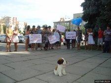 Кременчужане под мэрией провели акцию в поддержку стерилизации собак