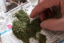 В Кременчуге за минувшие сутки поймали двух наркоманов