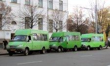 В Кременчуге учащихся младших классов 1 сентября будут возить бесплатно
