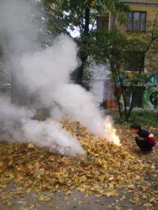 Кременчужане могут сообщать о сжигании листьев