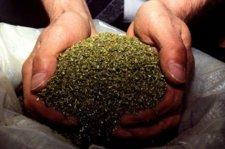 У кременчужанина нашли 450 г наркотиков