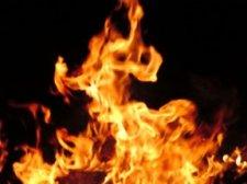 На Полтавщине выгорело почти 27 га кукурузы