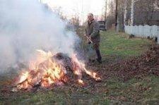 Штраф за сжигание листьев