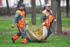 В Автозаводском районе вывезено свыше 6 тыс. куб. м. опавших листьев
