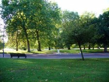Зеленая зона в районе улицы Сербиченко получит статус сквера