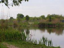 Заказник на Сухом Кагамлыке - это одно, а крытый бассейн - другое