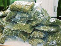 У кременчужанина изъяли 2 килограмма наркотического зелья
