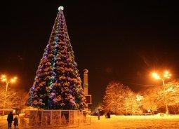 Главную елку Кременчуга планируют обновить
