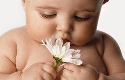 В Кременчуге ребенок отравился медпрепаратом