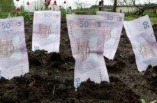 Стоимость аренды земли в Кременчуге снова может возрасти