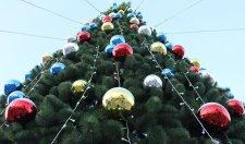 В Кременчугском районе объявили конкурс новогодних елок