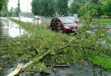 За ночь в городе упало три дерева и сорвало балконное покрытие