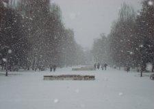 С 15 ноября придут морозы, а с 25 ноября – выпадет снег