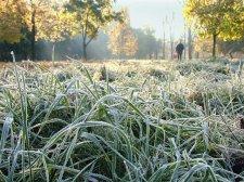 Погода на выходные: в Кременчуге ожидаются заморозки